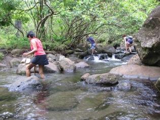 2012 - Hawai 1620