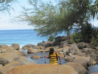 2012 - Hawai 1599